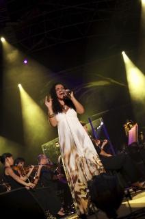 Rockestra 2011